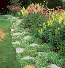 194 best garden paths patios pavers and edging images on