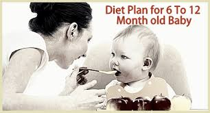 diet plan for 6 12 months baby feeding your 6 12 month baby
