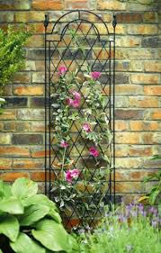 Build A Rose Trellis Metal Wall Trellis Estate Buildings Information Portal