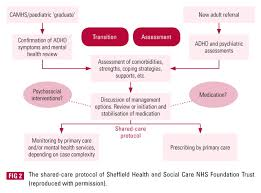 developing integrated mental health services for adults with adhd