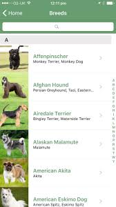 affenpinscher india microsoft releases fetch app for iphone that identifies a dog u0027s