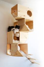 catissa we create cool stuff for cats