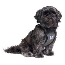 affenpinscher reviews amazon com mega pet car safety seatbelt dog harness small
