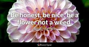 Life Of A Flower - honest quotes brainyquote