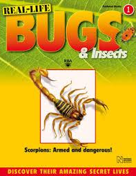 launch bugs u0026 insects inpublishing
