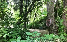 Urban Garden Woodland Hills - the urban wildlife of athens greece is