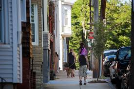 youth brigade aims to tree canopy gap in east boston wbur news