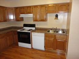 What Is The Best Finish For Kitchen Cabinets The Best Woods For Kitchen Cabinets Rta Kitchen Cabinets