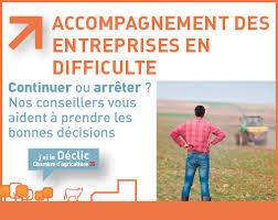 chambre d agriculture 35 ca 35 accompagnement des entreprises en difficulté chambres d