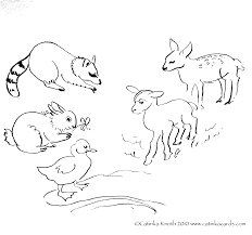 blossom and rabbit coloring pages coloring home