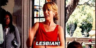 Bridesmaids Meme - bridesmaids lesbian reaction gifs