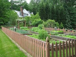 backyard metal fence ideas large size of garden ideasyard gates