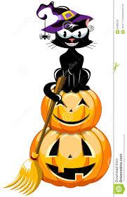 halloween black cat pumpkin broom stock vector image 60980076