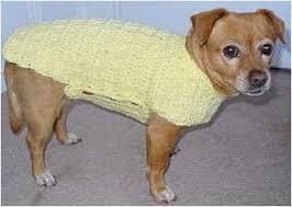 crochet pattern for dog coat 13 best crochet pug clothes images on pinterest doggies crochet