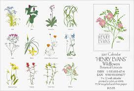 botanical calendars 2017 wildflowers botanical prints calendar by henry ca17e