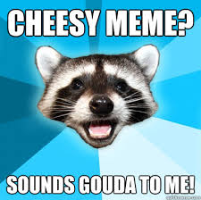 Cheesy Memes - cheesy meme sounds gouda to me lame pun coon quickmeme