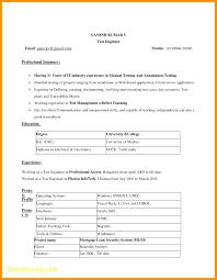 resume format in word doc template word doc resume template