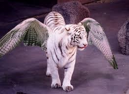 flying tiger by taen on deviantart