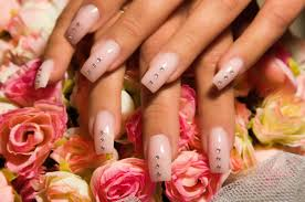 services nail salon carmel nail salon 46032 carmel nails