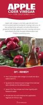 diy apple cider vinegar for cold sores