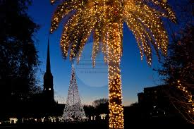 Decorate Palm Trees With Christmas Lights by Charleston Holiday Lights Richard Ellis Photography Archive