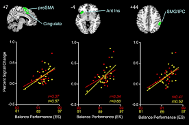 brain activity during ankle proprioceptive stimulation predicts