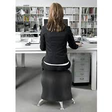 Yoga Ball Desk Chair by Exercise Ball Chair Office Max Exercise Balls For The Office