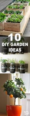 Indoor Gardening Ideas Indoor Garden Ideas Images Herb Design Diy Decoratingia Best