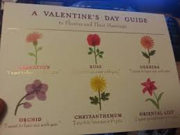 flower meanings according to my girlfriend she u0027s a keeper imgur