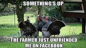 turkey jokes for thanksgiving