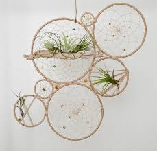 Wall Plant Holders Wow Talon At This Tillandsia Jungalow Dream Catcher Wall Art