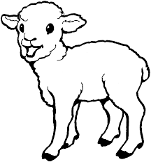cute sheep coloring pages kids ek4 printable sheep coloring