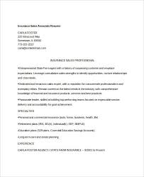 free sales resume 47 free word pdf documents download free