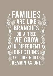 quotes on family cool best 25 beautiful family quotes ideas on
