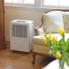 Dehumidifier Basement Top 10 Best Rated Dehumidifiers For Basement Whole House