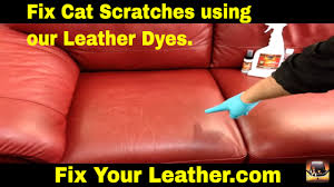 Which Leather Is Best For Sofa How To Fix Cat Scratches On A Leather Couch Youtube