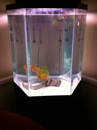Canopy For Sale Walmart by Fish Tank Hexagon Aquarium Fish Tank Clearor Life Walmart Com