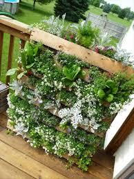 Patio Herb Garden Ideas Patio Herb Garden Will Be A Seat For The Rest Garden