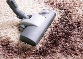 can i use carpet cleaner on upholstery carpet and upholstery cleaning experts in fort william