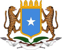 British Somaliland Flag Somalia Familypedia Fandom Powered By Wikia