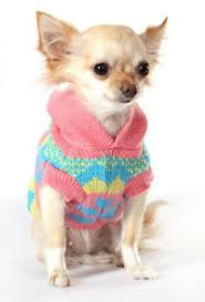 chihuahua sweaters clothes patterns that are popular chihuahua clothes