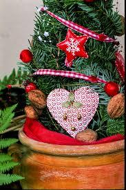 free images winter light star flower celebration pine love