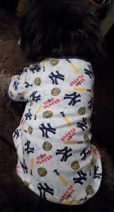 best 20 shirts for dogs ideas on pinterest t shirts for dogs