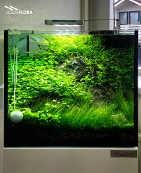 Substrate Aquascape The World U0027s Best Photos Of Aquarium And Led Flickr Hive Mind