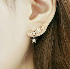 ear candy earrings new arrival korean style womens shiny