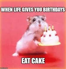 top 100 original and funny happy birthday memes eat cake life