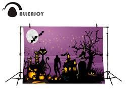 halloween background cat and pumpkin popular background photography halloween buy cheap background