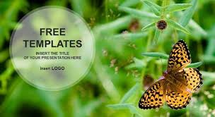 butterfly powerpoint template free download professional powerpoint
