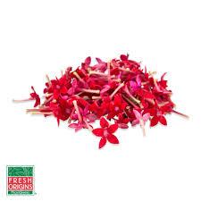buy edible starflowers in bulk marx foods