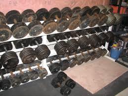 home gym rich dlin reader beware